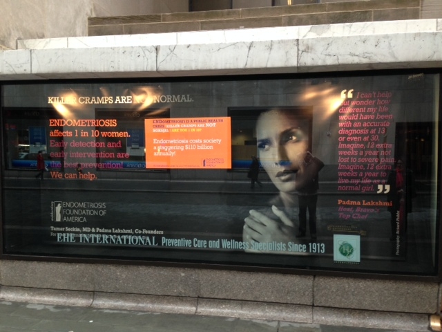 "EHE International Donates Rockefeller Center Window Display to the Endometriosis Foundation of America's ""Killer Cramps Are NOT Normal"" Campaign"