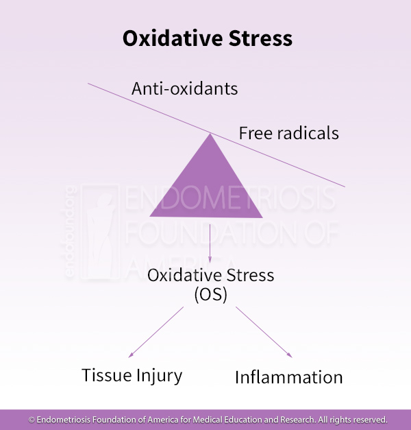 Oxidative stress from an abundance