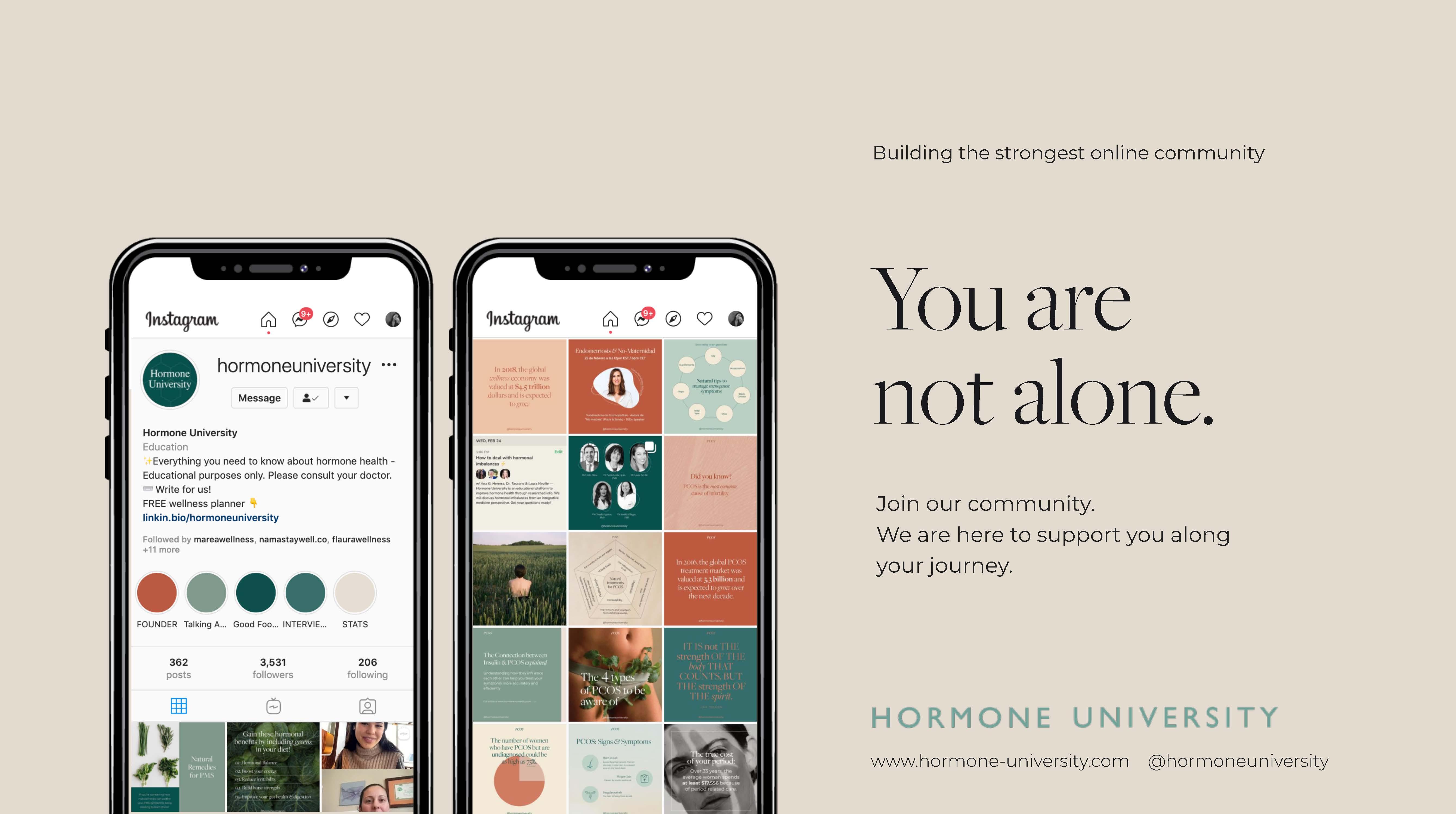 Endofound and Hormone University