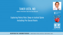 Exploring Pelvic Pain: Deep to Ischial Spine Including Pre-Sacral Roots - Taner Usta, MD