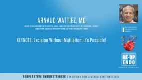 KEYNOTE: Excision Without Mutilation: It's Possible! - Arnaud Wattiez, MD