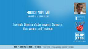 Insoluble Dilemma of Adenomyosis: Diagnosis, Management, and Treatment  - Errico Zupi, MD