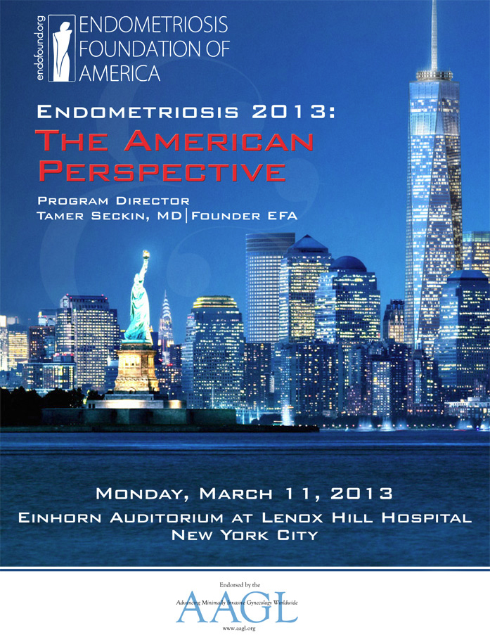 Medical Conference 2013: The American Perspective