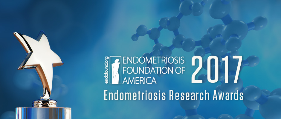 Endometriosis Research Awards 2017